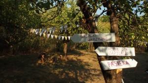 Ogród Społeczny Fort Bema