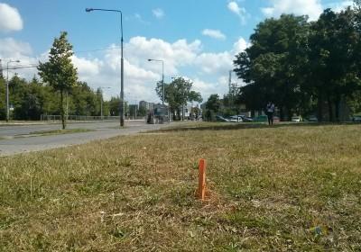 Ulica Powstańców Śląskich na wysokości ulicy Czumy