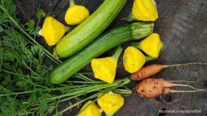 Warzywa z ogrodu społecznego